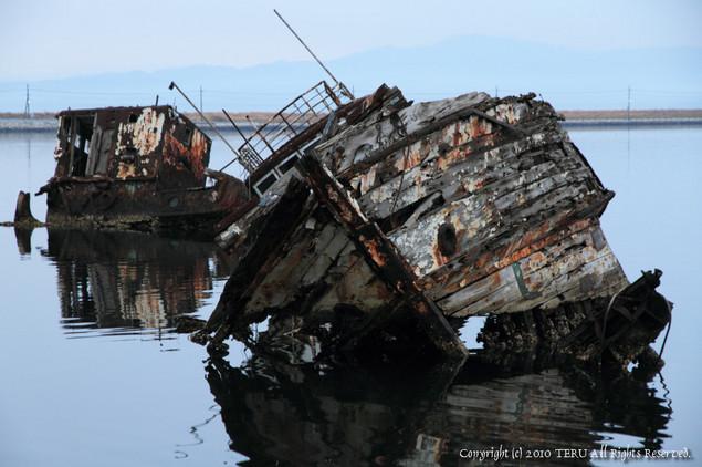 2010-01-31-004.jpg